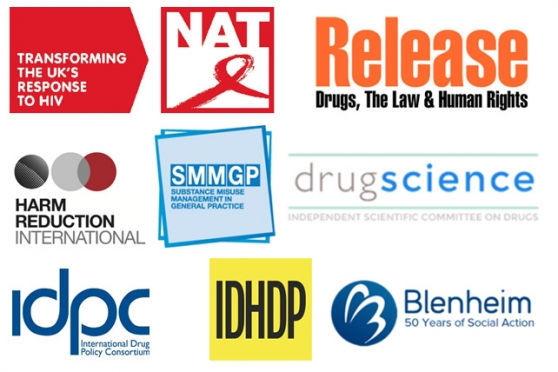 English Harm Reduction Group Response to the 2017 Drugs
